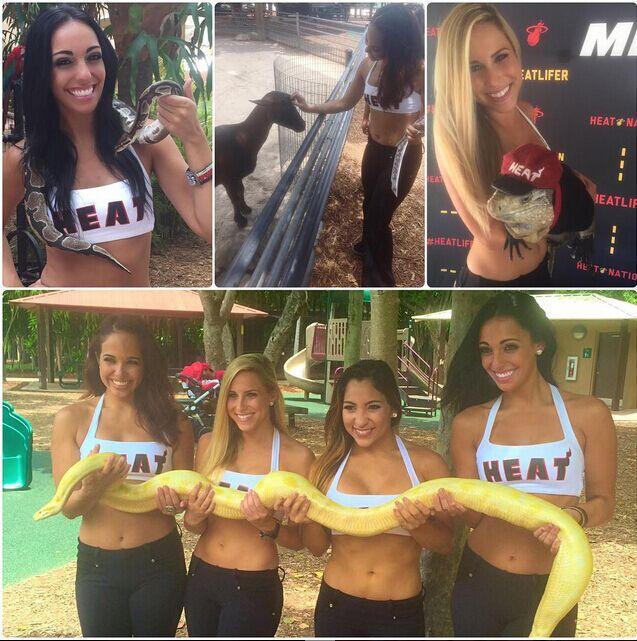 热火拉拉队成员前往动物园:与蛇共舞