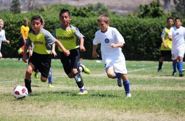 美国职业俱乐部被纳入青训体系