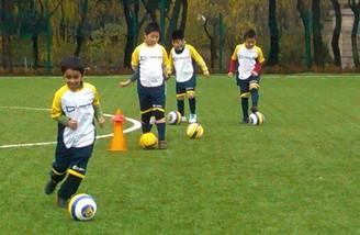 中韩青训差别:家长因出路不让孩子踢球