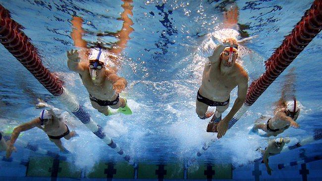 澳大利亚游泳队管理被诟病,对明星缺乏约束
