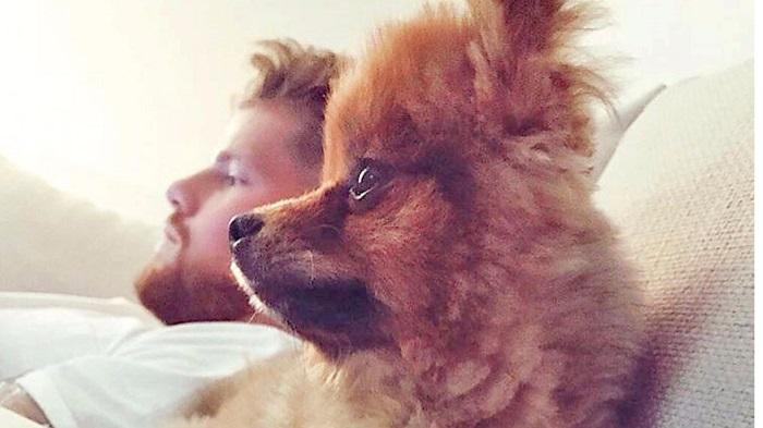 调皮!科隆门将霍恩:我和爱犬有着同样的发型