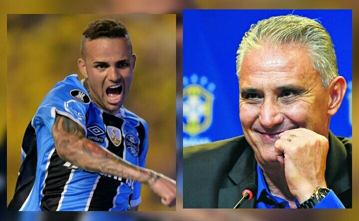 南美足球最佳评选:卢安、蒂特当选最佳球员与教练