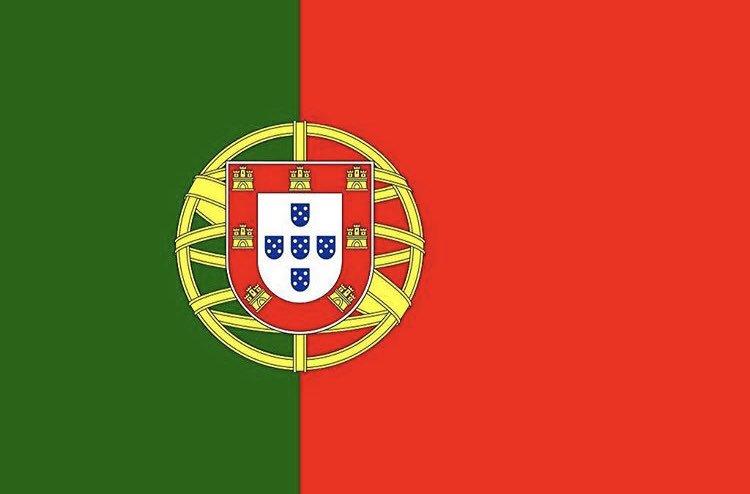 C罗发推感谢葡萄牙球迷:你们的支持至关重要