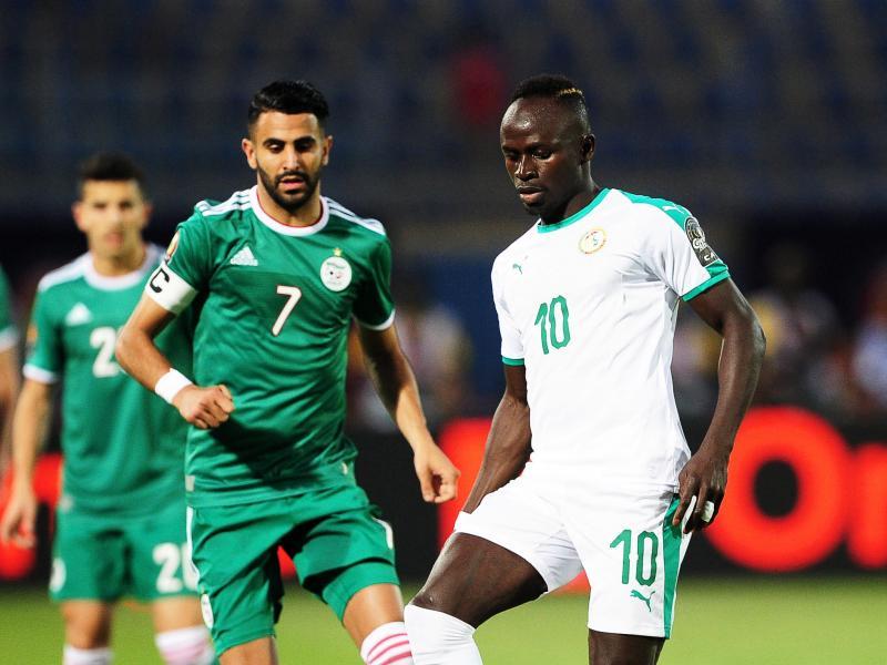 非洲杯夺冠赔率:塞内加尔阿尔及利亚尼日利亚分列前3
