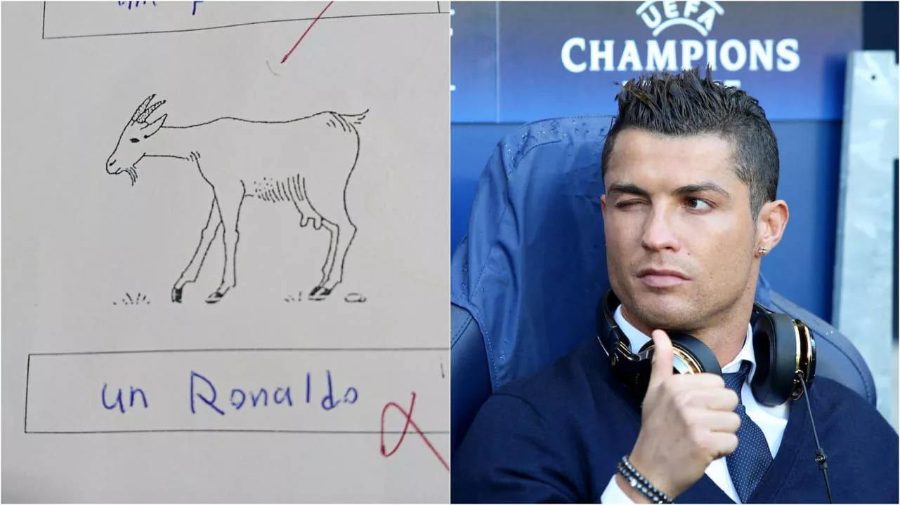 题目不会做,一法语学生在山羊下写下C罗名字