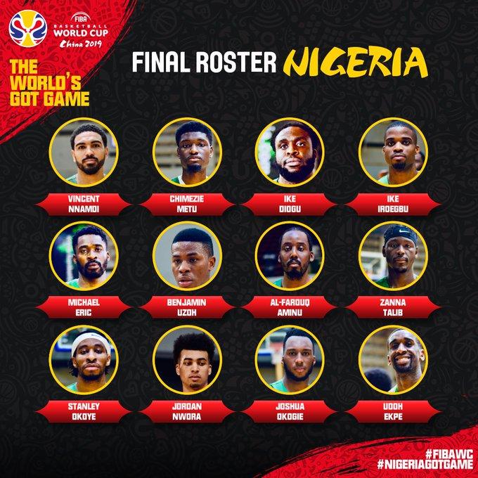 尼日利亚男篮公布12人大名单,阿米奴、奥科吉领衔