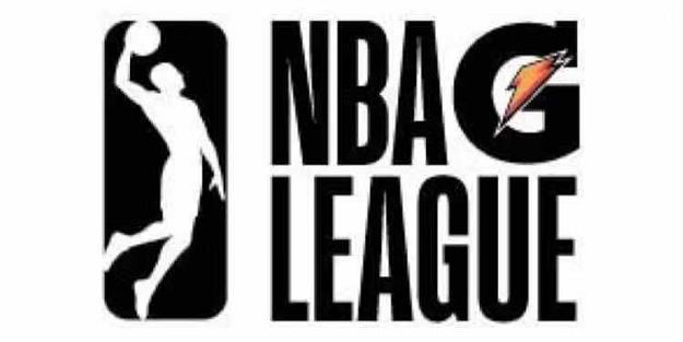 老鹰在NBA发展联盟的附属球队将进行公开试训