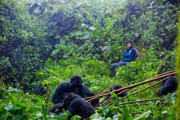当蓬蓬头遇见大猩猩,路易斯Ins上传自己与山间狒狒合影