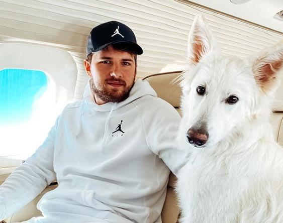 东契奇更新Ins动态,与宠物狗一同乘坐飞机