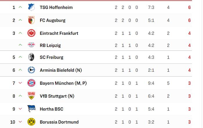 开局两连胜排名德甲榜首,霍芬海姆6亚愽赛事竞猜官网年来首次登顶