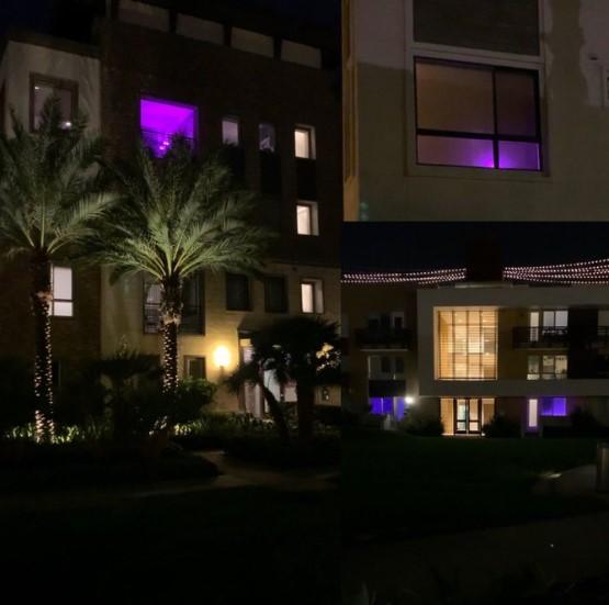 珍妮-巴斯发推:离开洛杉矶时看到几户人家窗户亮着紫光