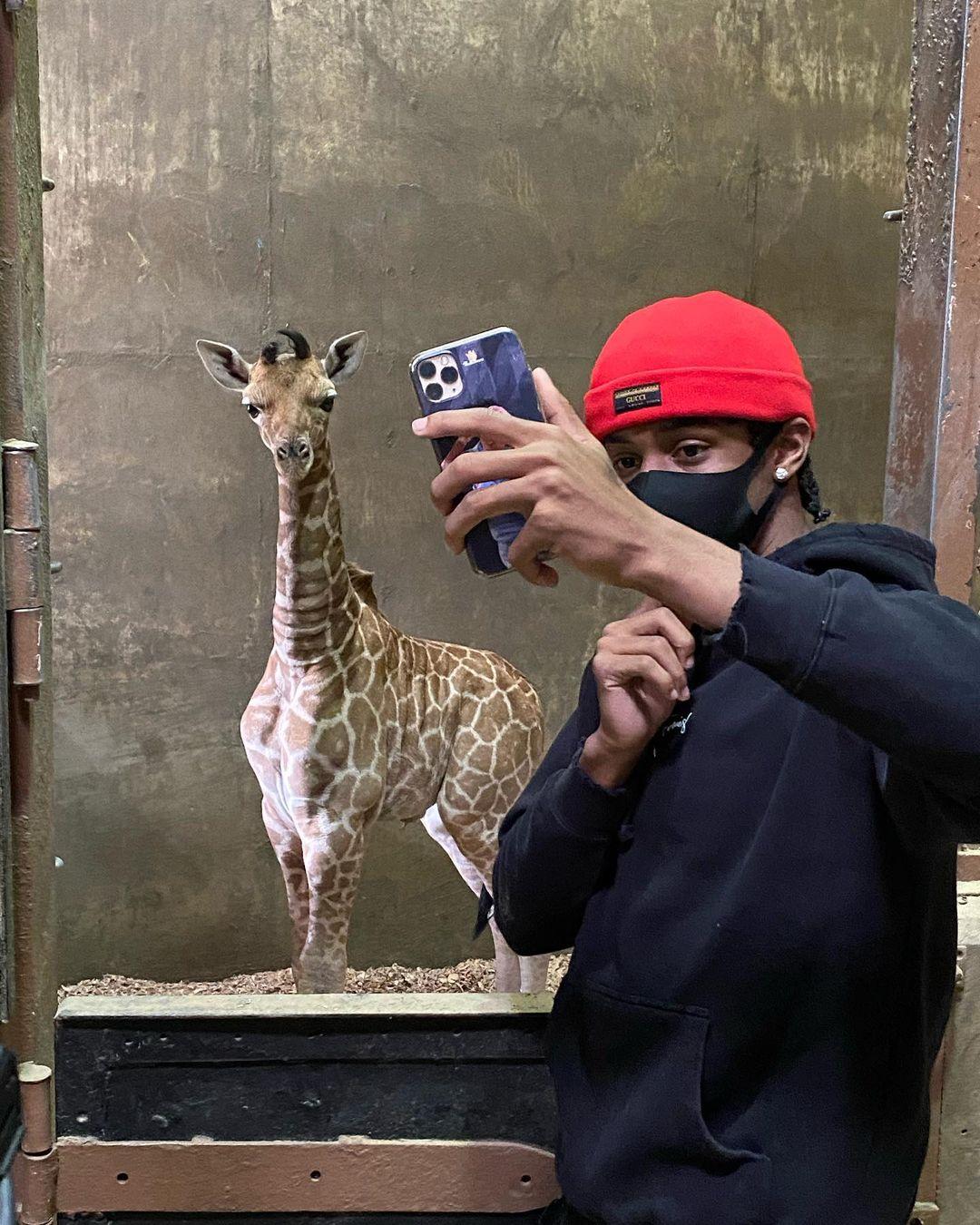 灰熊官方更新Ins,晒莫兰特与当地动物园小长颈鹿的合影