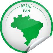 巴西足球BrasilFutebol